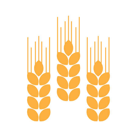 Ears of wheat, yellow icon. Vector illustration