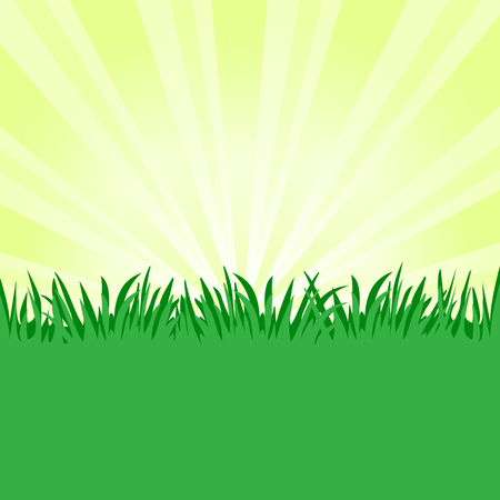 Grass background, green meadow, place for your text. Vector illustration