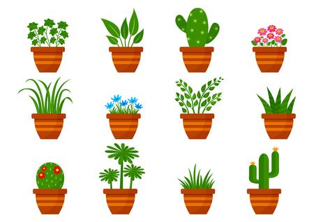 Set of houseplants in pots, indoor flowers. Vector illustration Banque d'images - 124547722