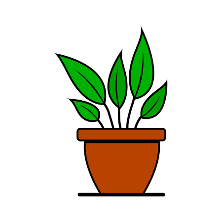 Houseplant in pot. Colored icon isolated on white background. Vector illustration Illustration