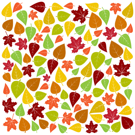 Autumn background of colorful leaves. Vector illustration