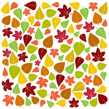 Fondo de otoño de hojas de colores. Ilustración vectorial