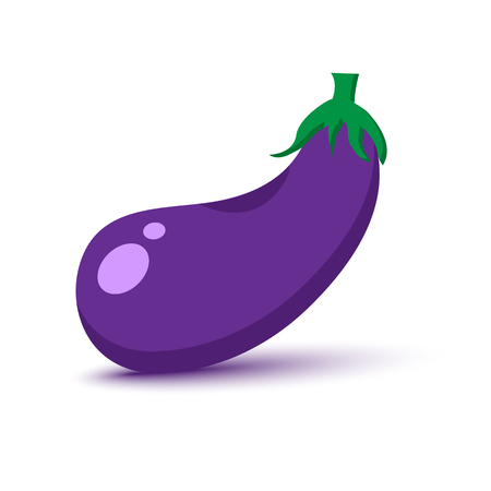Colored eggplant with shadow. Vector illustration