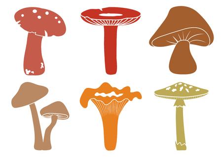 Cartoon colorful set mushroom, vector illustration