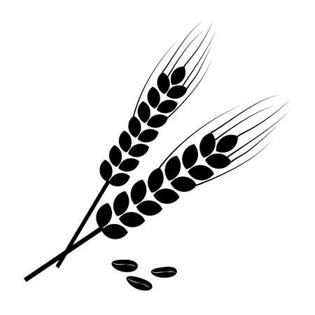Spighe di grano nero e chicchi di grano. Illustrazione vettoriale Vettoriali