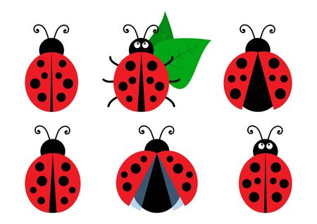 Set of colored cute ladybug icons. Vector illustration