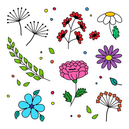 Set of different flowers and plant, hand drawn. Vector illustration