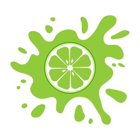 Lime fruit citrus, green splash isolated on white background. Vector illustration