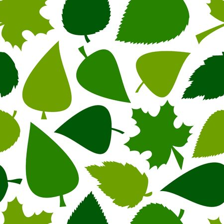 Green seamless pattern with different leaves isolated on white background. Vector illustration