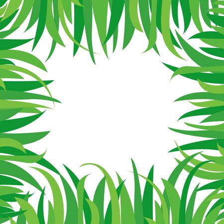 Decorative background with green grass isolated on white background. Square frame in nature style, space for your text. Vector illustration