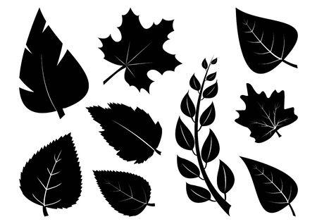 Set of different leaves, black silhouettes. Vector illustration Çizim