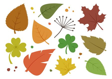 Colorful set of different autumn leaves, hand drawn. Vector illustration