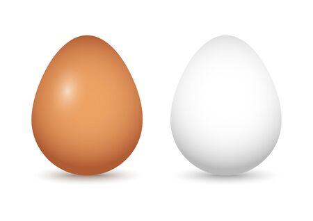 Reeks bruine en witte eieren met schaduw. vector illustratie