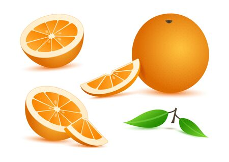Orange realistic with leaves, slice citrus fruits isolated on white background. Vector illustration