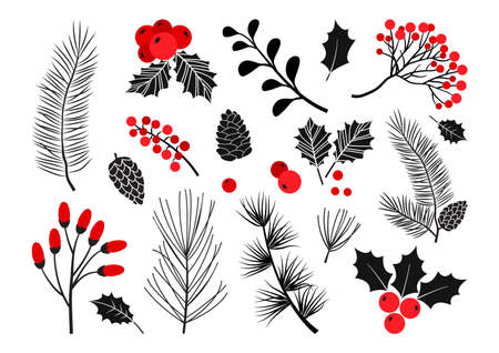 Christmas vector plants holiday decoration in red and black colors. Vectores