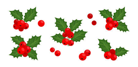Holly berry vector icons Christmas symbol, holiday plants isolated on white background, winter illustration