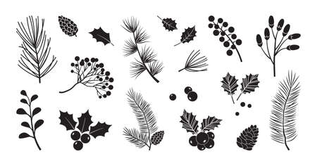 Christmas vector plants, holly berry, christmas tree, pine, leaves branches, holiday decoration, winter symbols isolated on white background. Black silhouettes. Vintage nature illustration 向量圖像
