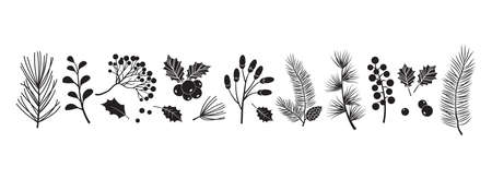 Christmas vector plants, holly berry, christmas tree, pine, leaves branches, holiday decoration, winter symbols isolated on white background. Black silhouettes. Vintage nature illustration Ilustracja