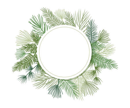 Christmas plant vector circle border with fir and pine branches, evergreen wreath and corners frames. Round nature vintage card, foliage illustration