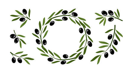 Olive crown, wreath vector set and greek olive branches, tree leaves twigs isolated on white background. Nature illustration 矢量图像