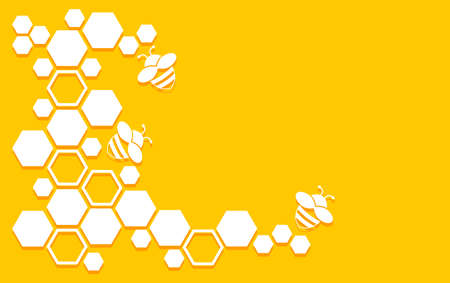 Honeycomb vector pattern with bee and hexagons. Honey background. Yellow and white geometric texture. Abstract hive illustration 矢量图像