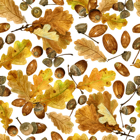 Seamless texture of watercolor fall oak leaves and acorns. Bright autumn print with natural elements. Pattern of decorative hand drawn ornament for wrapping, holidays design or invitation cards on white background Banco de Imagens