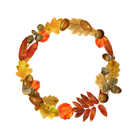 Watercolor wreath of autumn leaves and acorns. Fall composition of bright oak, rowan, aspen foliage and branches. Design of round frame for wedding, invitations or cards