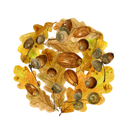 Watercolor pattern of autumn oak leaves and acorns. Bright fall round print with natural elements. Decorative hand drawn ornament for wrapping, wedding design or invitation cards on white background Banco de Imagens