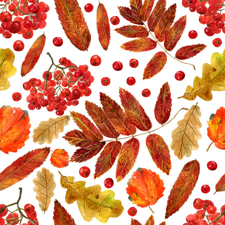 Seamless texture of watercolor fall oak, aspen, rowan leaves and berries. Bright autumn print with natural elements. Pattern of decorative hand drawn ornament for wrapping, holidays design or invitation cards on white background