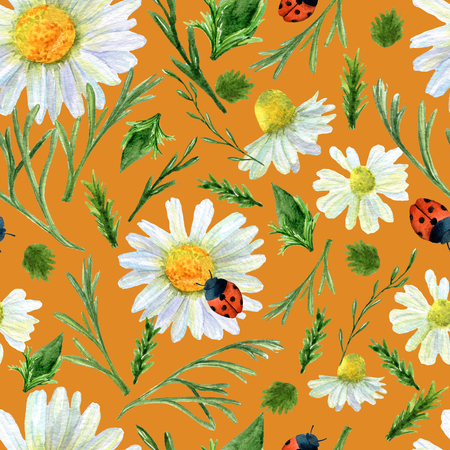 Seamless texture of watercolor summer meadow flowers, ladybirds and herbs. Bright floral print with natural elements. Pattern of decorative hand drawn ornament for wrapping, holidays design or invitation cards on white background Banco de Imagens