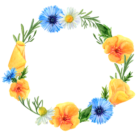 Watercolor wreath of summer meadow flowers and herbs. Floral composition of poppies, cornflowers and chamomiles. Design of round frame for wedding, invitations or cards