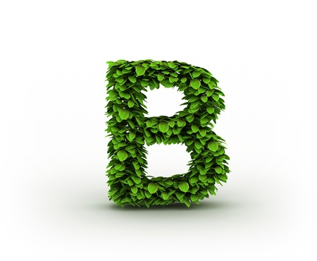 write a letter: Letter  B , alphabet of green leaves