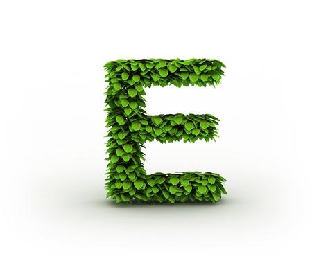 e alphabet:  Letter  E, alphabet of green leaves Stock Photo