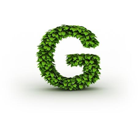 g alphabet:  Letter  G, alphabet of green leaves