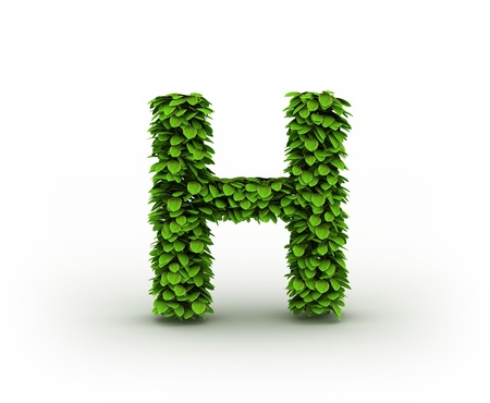 Letter  H, alphabet of green leaves