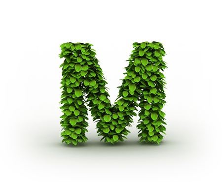 letter m:  Letter  M, alphabet of green leaves