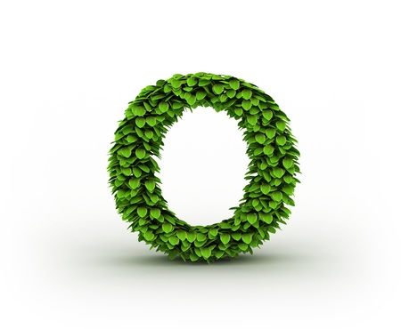 Letter  O, alphabet of green leaves photo