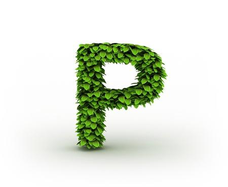 letter p:  Letter  P, alphabet of green leaves