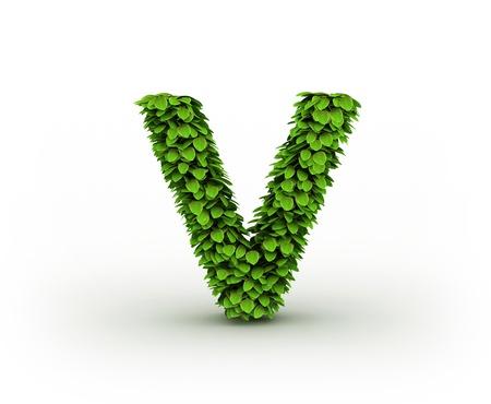 letter v:  Letter V, alphabet of green leaves