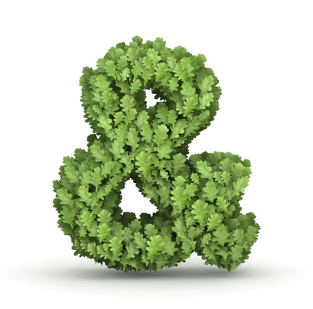 Ampersand sign  from fresh green oak grow leaves Stock Photo - 17907477