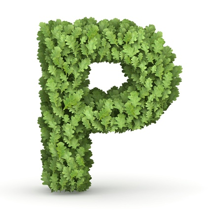 Letter P from fresh green oak grow leaves photo