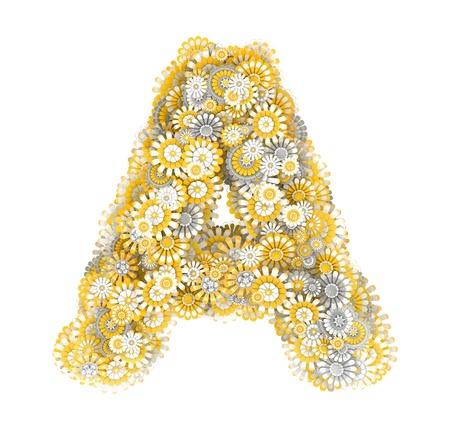 ox eye daisy: Alphabet from camomile flowers, letter A shape Stock Photo