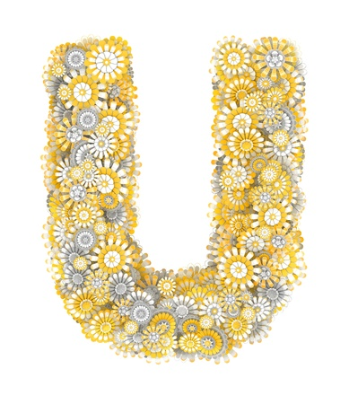 ox eye: Alphabet from camomile flowers, letter U shape