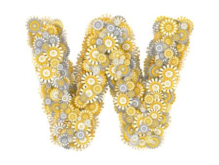 ox eye daisy: Alphabet from camomile flowers, letter W shape Stock Photo