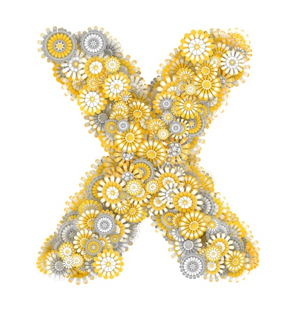 ox eye: Alphabet from camomile flowers, letter X shape