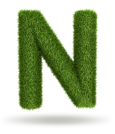 Natural 3d isolated photo realistic grass letter N photo