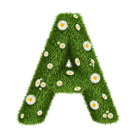 Letter A  photo realistic grass font with flower camomile photo