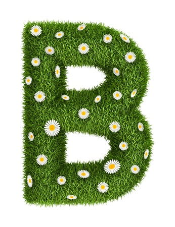 Letter B photo realistic grass font with flower camomile photo