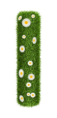 Letter i photo realistic grass font with flower camomile photo