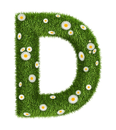 Letter D photo realistic grass font with flower camomile photo